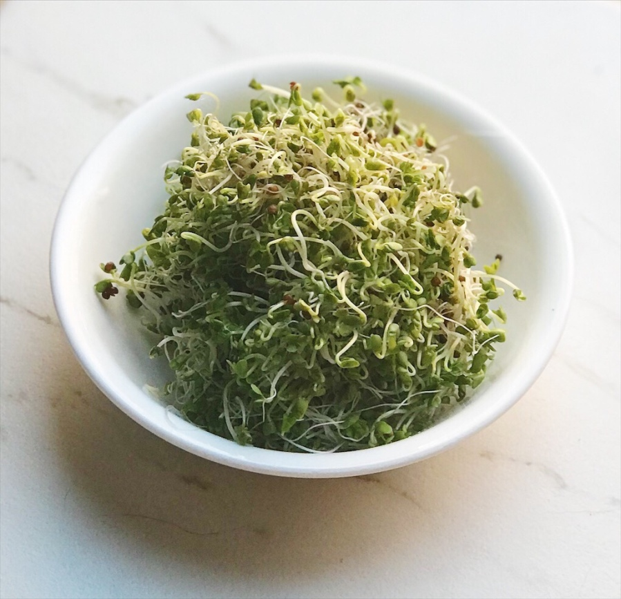 How To Sprout Your Own BroccoliSprouts